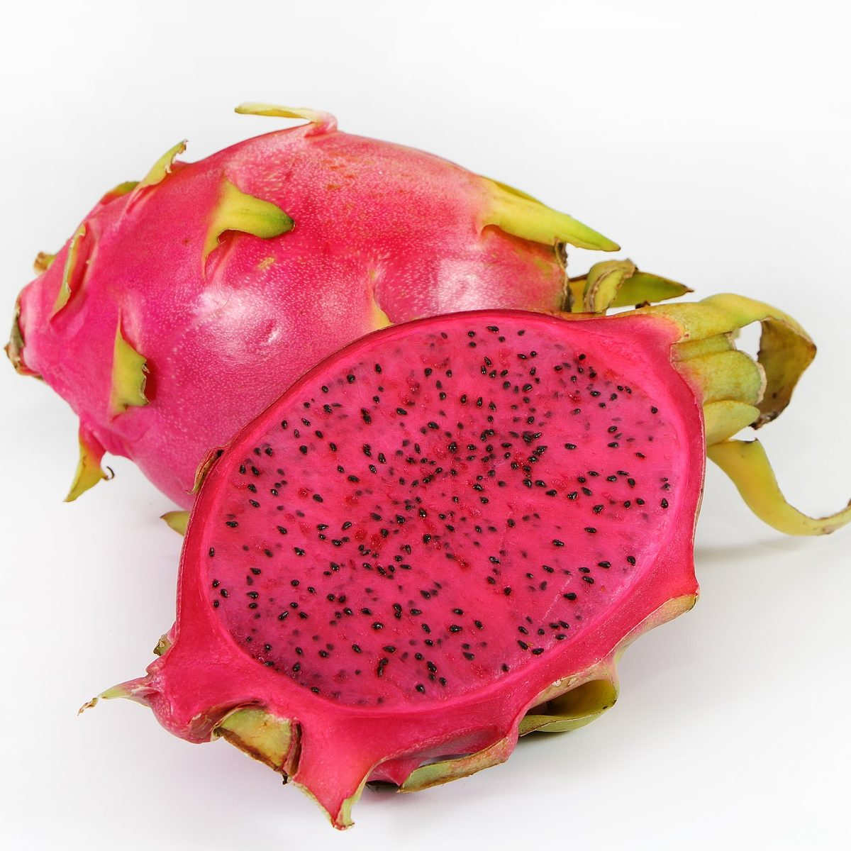 Red Dragon Fruit Beer Recipe D.I.Y.